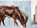 rhodesia-31a