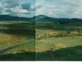 tea_landscape