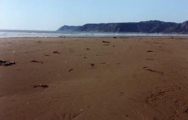 Te-Araroa_Beach