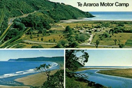 Te_Araroa
