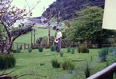 andy-gardner-little-huia-1997-1-jpg